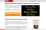 DIY Themes – Best SEO WordPress Theme Thumbnail